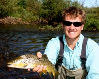 Illinois River Brown Trout 1